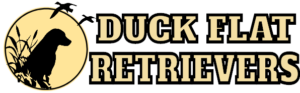 Duck Flat Retrievers Logo